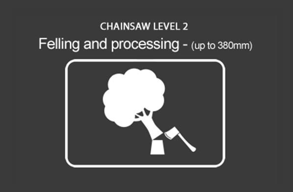 Chainsaw (CS31) (Units 20-04) Felling Small Trees (up to 380mm)