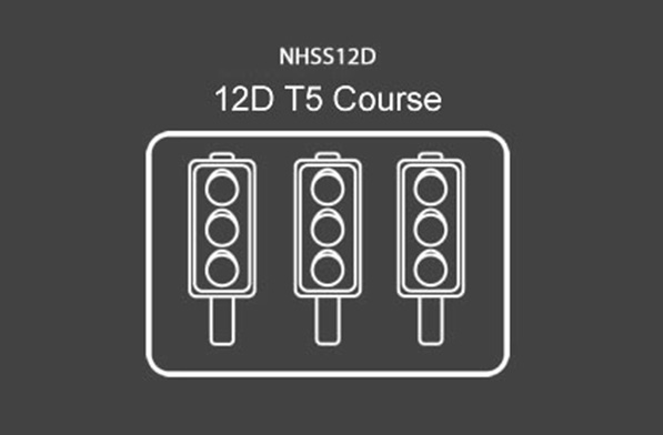 NHSS 12D T5 Multi-Phase Traffic Signals