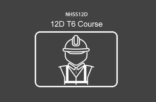 NHSS 12D T6 RLTMO (Regsitered Lead Traffic Management Operative)