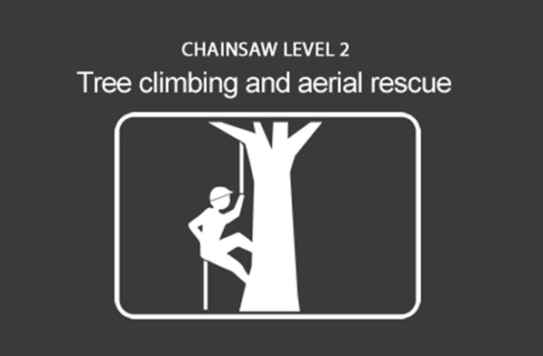 Chainsaw (CS38) Climb Trees and Perform Aerial Rescue