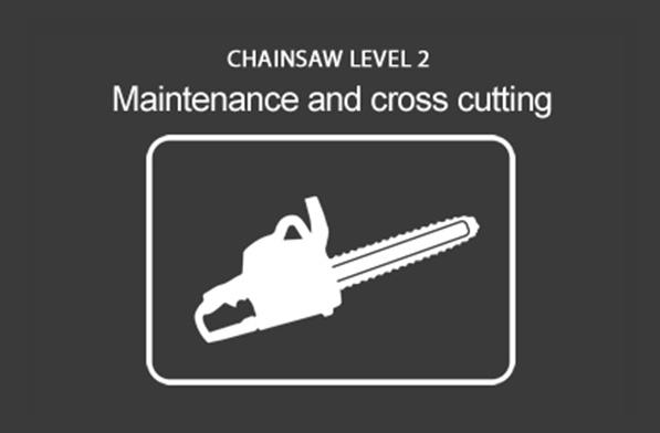 Chainsaw (CS30) (Units 20-02 / 20-03) Maintenance & Crosscutting