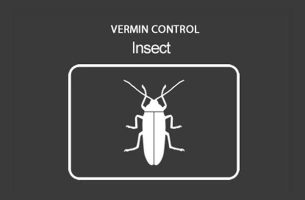Domestic Insect Control